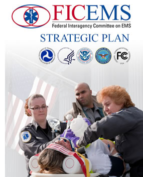 FICEMS Strategic Plan